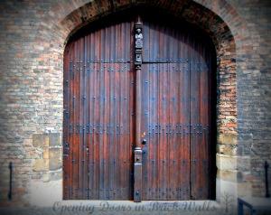 Door29lomo