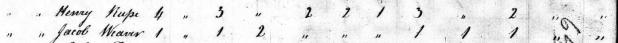 1810censusroop