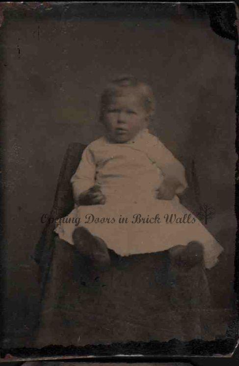 1888Alnie