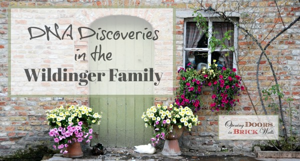 52 Ancestors: #32 DNA Discoveries in the WILDINGER Family