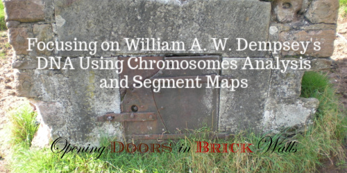 Focusing on William A. W. Dempsey's DNA Using Chromosomes Analysis and SegmentMaps